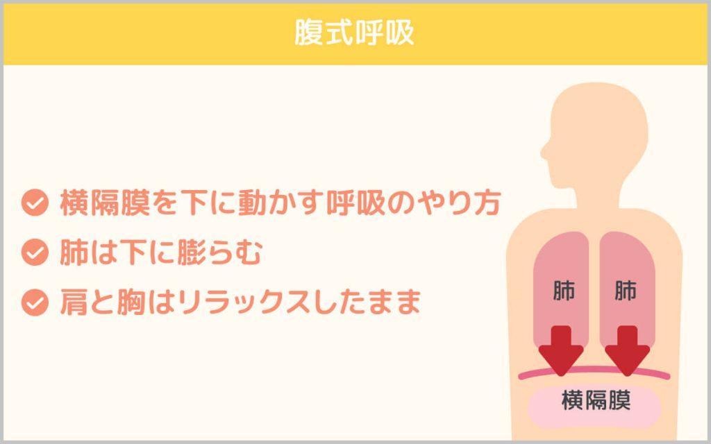 腹式呼吸の説明