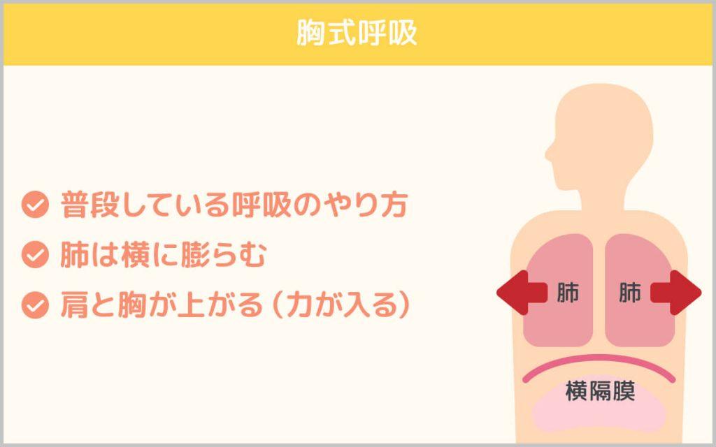胸式呼吸の説明